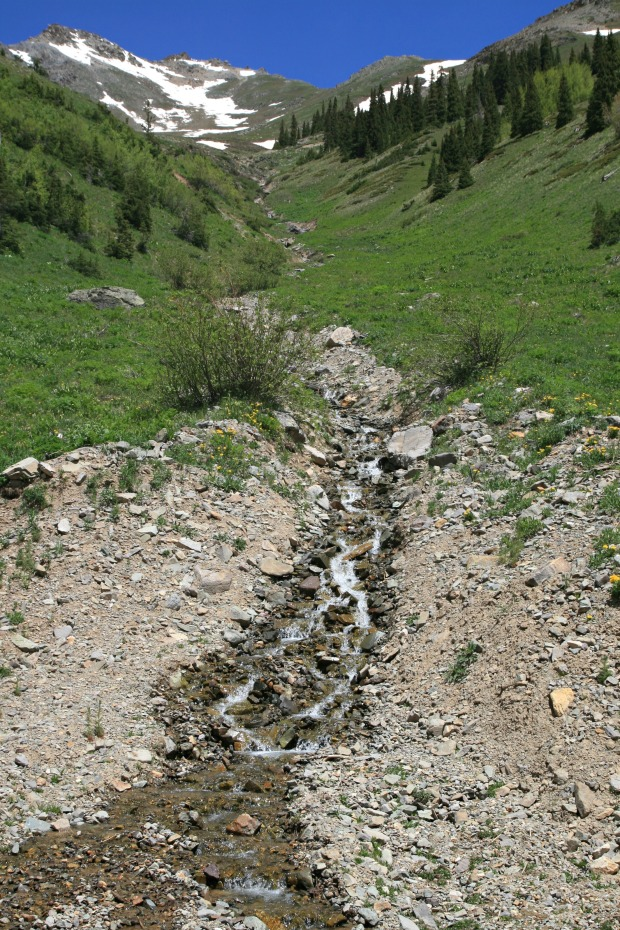 Creek on Ophir Pass